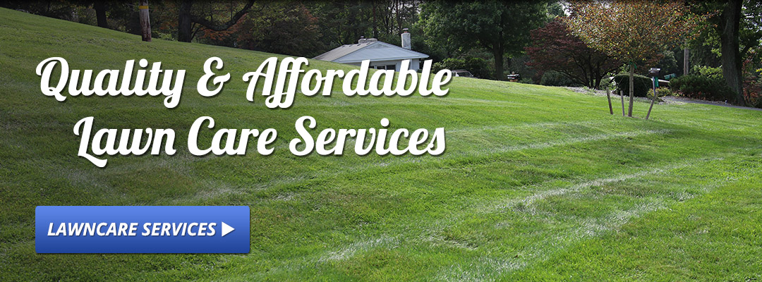quality & affordable lawn care services