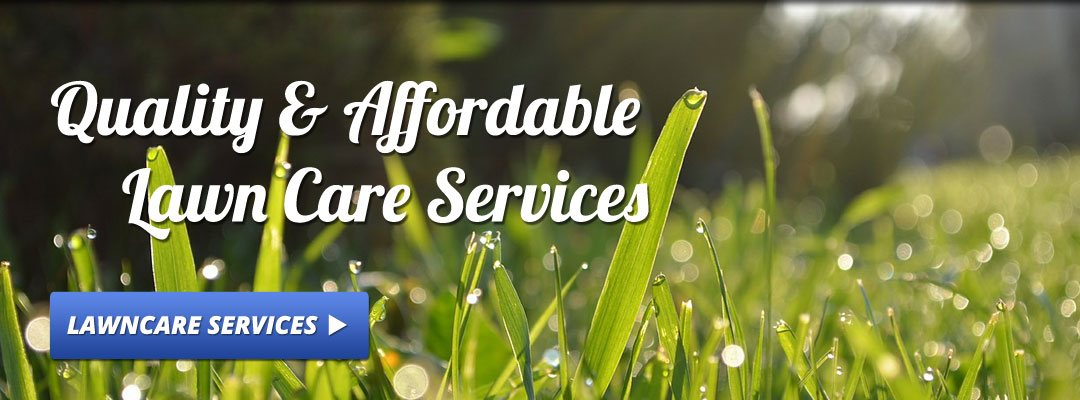 quality and affordable lawn care services