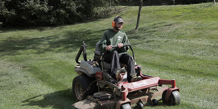 lawn mowed with line striping pattern